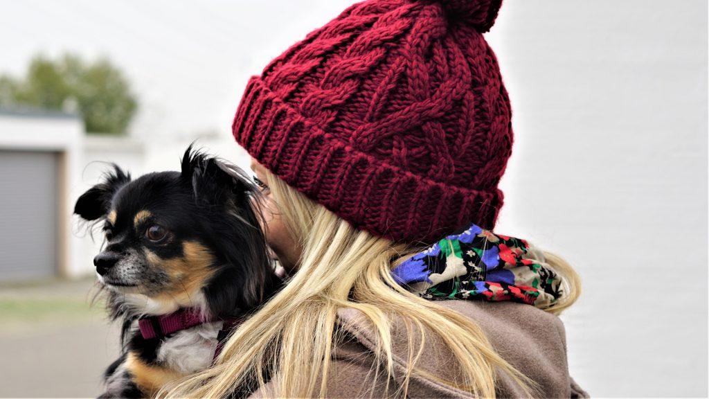 Leeftijd Chihuahua